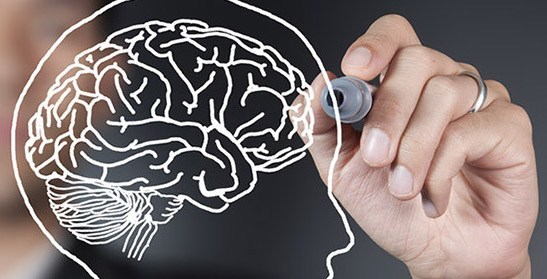 2-Day Mastery Course on Neuroscience Informed Therapy Connect Complicated Brain Research with Accessible Therapeutic Strategies for Anxiety, Depression, Chronic Pain, Substance Abuse & Trauma - Jennifer Sweeton