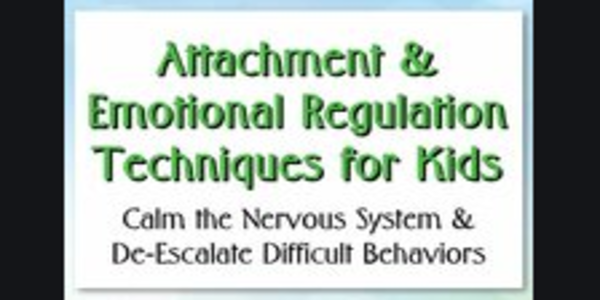 77$. Attachment & Emotional Self-Regulation Skills for Children Empowering Positive Behavior From the Inside Out - Kathryne Cammisa