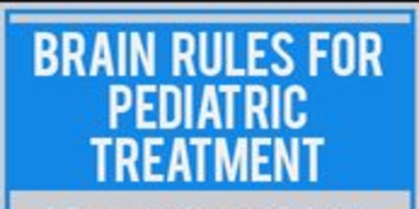42$. Brain Rules for Pediatric Treatment Neuroscience Meets Evidence-Based Practice - Charlene Young