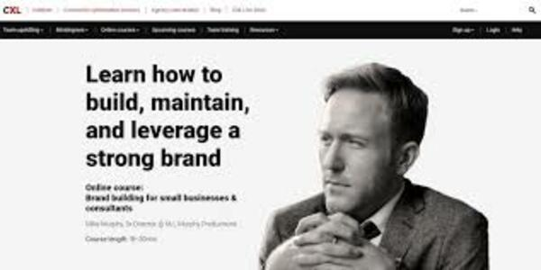 50$. Brand Building For Small Businesses And Consultants - Mike Murphy