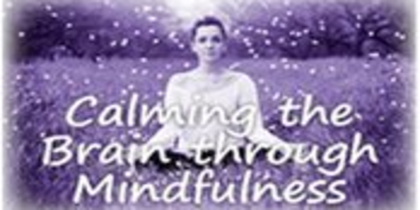 77$. Calming the Brain through Mindfulness Rewire Emotions with the Power of Neuroplasticity - Mark L. Beischel