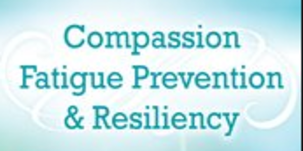 22$. Compassion Fatigue Prevention & Resiliency Fitness for the Frontline - Eric Gentry