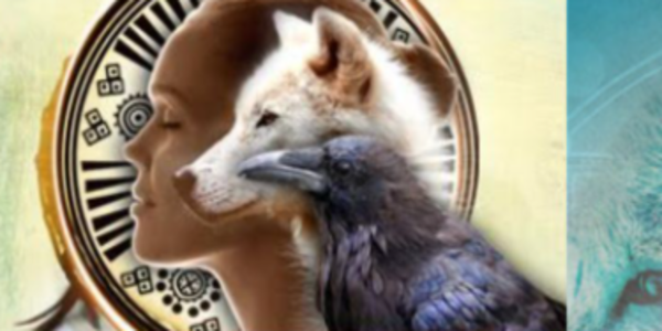53$. Shamanic Journeying for Guidance and Healing part 1 – Sandra Ingerman