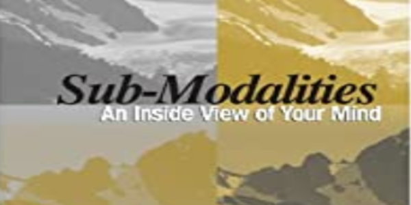 18$. Sub-Modalities-An Inside View of Your Mind - Charles Faulkner