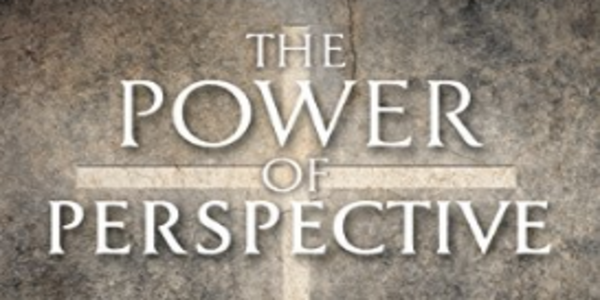 35$. The Power of Perspective - Marilyn Sargent & AI Sargent