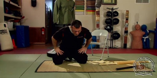 $61. The Self Defence Training System - Damian Ross