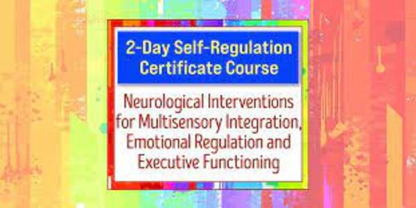 2-Day Self-Regulation Certificate Course Neurological Interventions for Multisensory Integration, Emotional Regulation and Executive Functioning - Varleisha D. Gibbs (1)