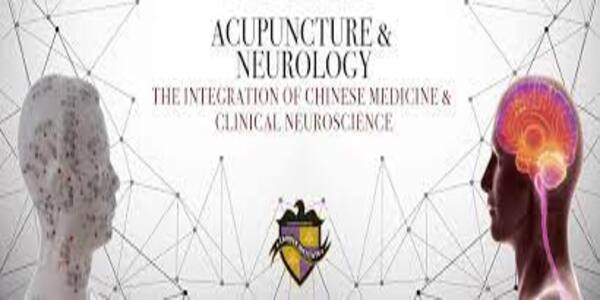 Acupuncture & Neurology – The Integration of Chinese Medicine and Clinical Neuroscience (1)