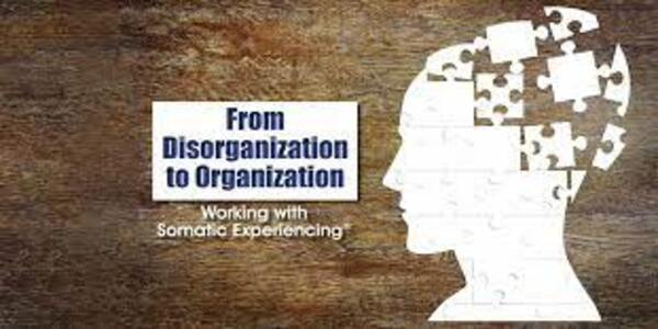 From Disorganization to Organization Working with Somatic Experiencing (1)