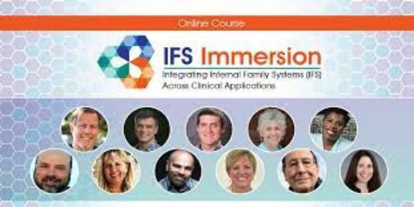 IFS Immersion Integrating Internal Family Systems (IFS) Across Clinical Applications - Frank Anderson (1)