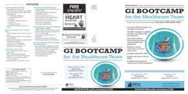 $59 GI Bootcamp For the Healthcare Team - Peter Buch